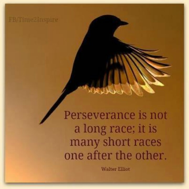 24 Best Perseverance Images On Pinterest