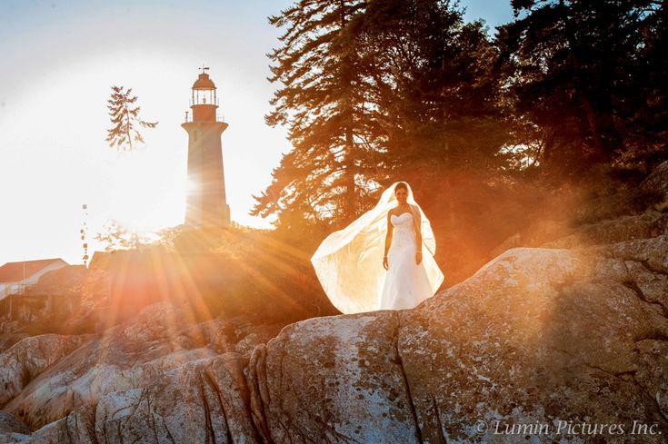 A True Beauty at Lighthouse Park