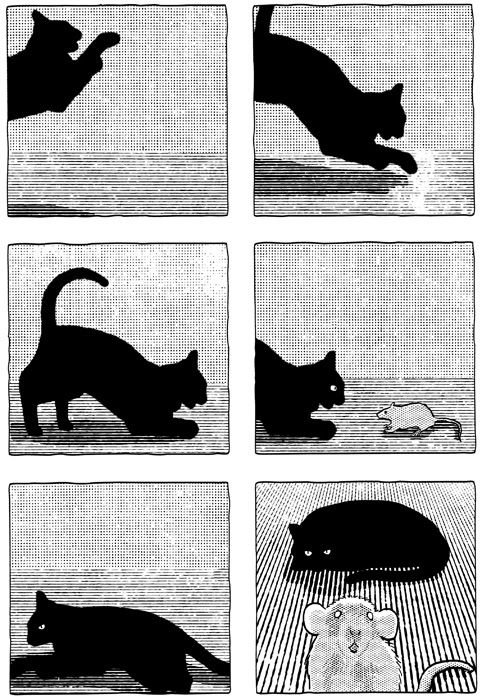 Giacomo Nanni: black kitten big rat