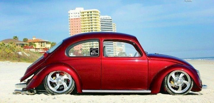 Probably best to keep the slammed bugs off the beach