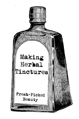 Fresh Picked Beauty: Making Tinctures