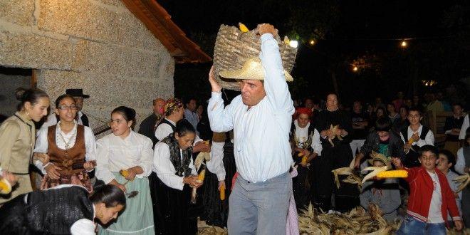 Vida e Cultura | Noticias Maia