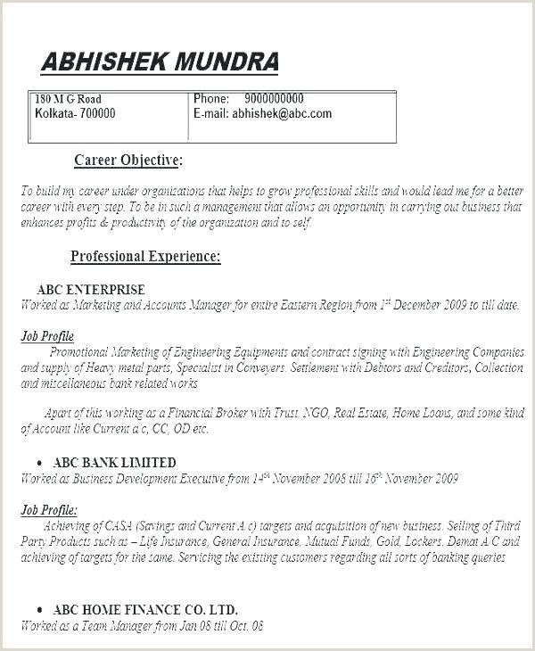 Standard Resume Format Pdf In 2020 Resume Objective Examples