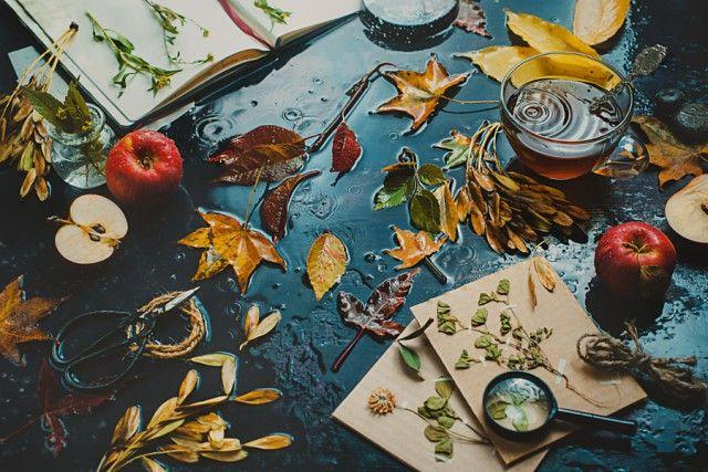 Студийная съёмка красивого осеннего натюрморта с дождём. Советы и идеи от Дины Беленко