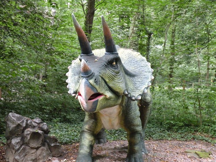 Triceratops in the woods in Poland