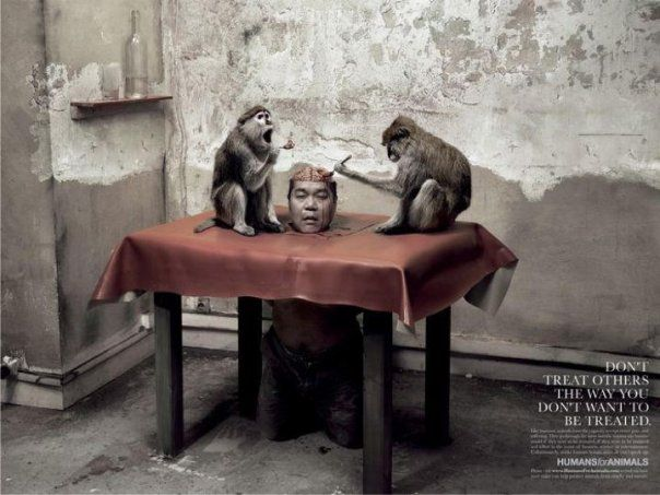 eating brain of live monkey - Поиск в Google