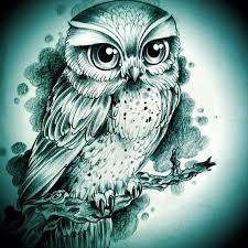 """Képtalálat a következőre: """"cute owl drawing pinterest"""""""