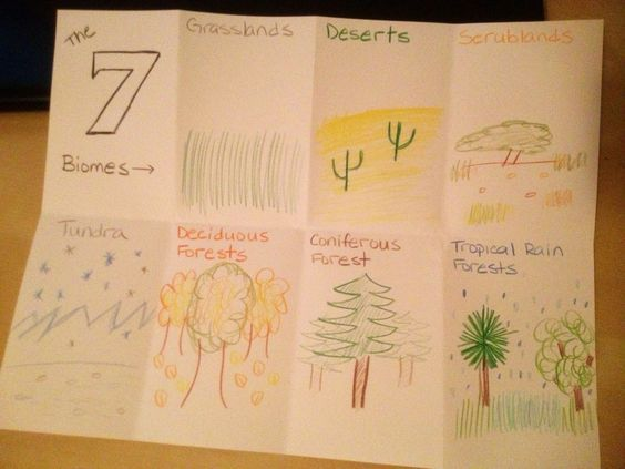 cc cycle 2 week 1  7 types of biomes