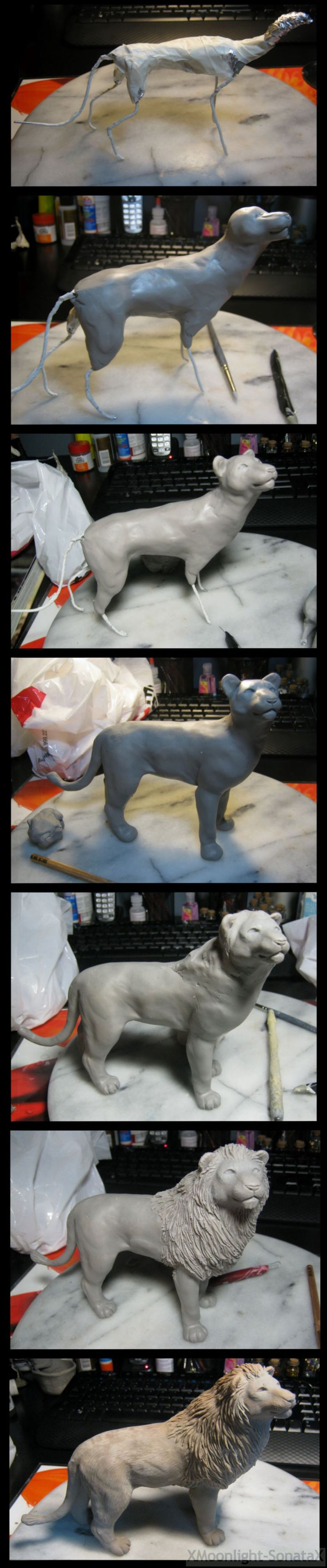 :.Lion Process.: by XPantherArtX.deviantart.com on @deviantART
