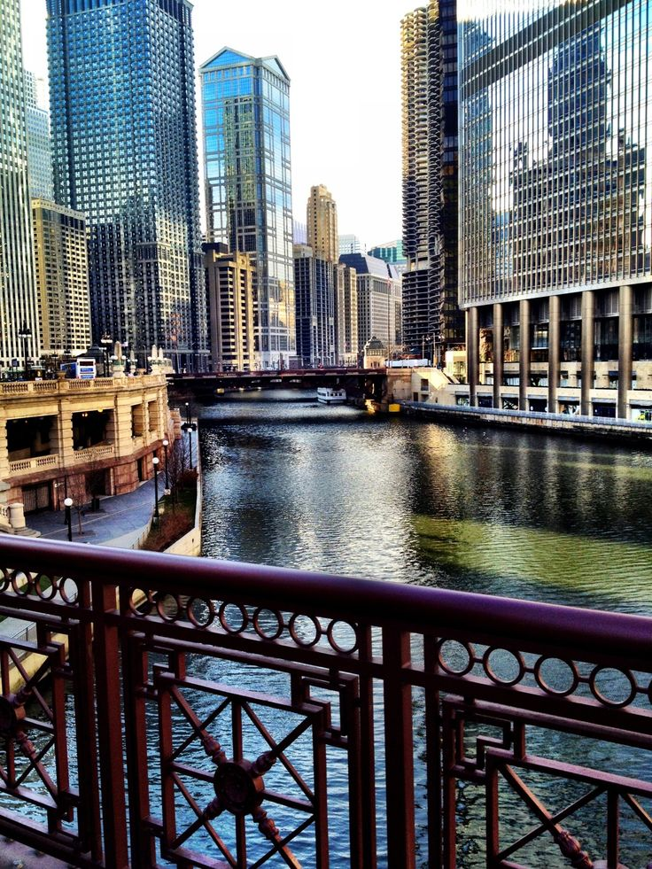 Chicago, IL - This city! There is so much to do and EAT. And it's so clean!