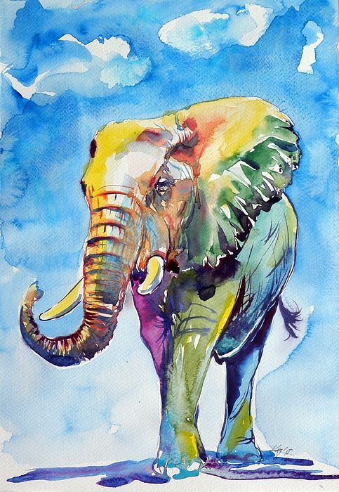 Colorful Elephant by Kovacs Anna Brigitta