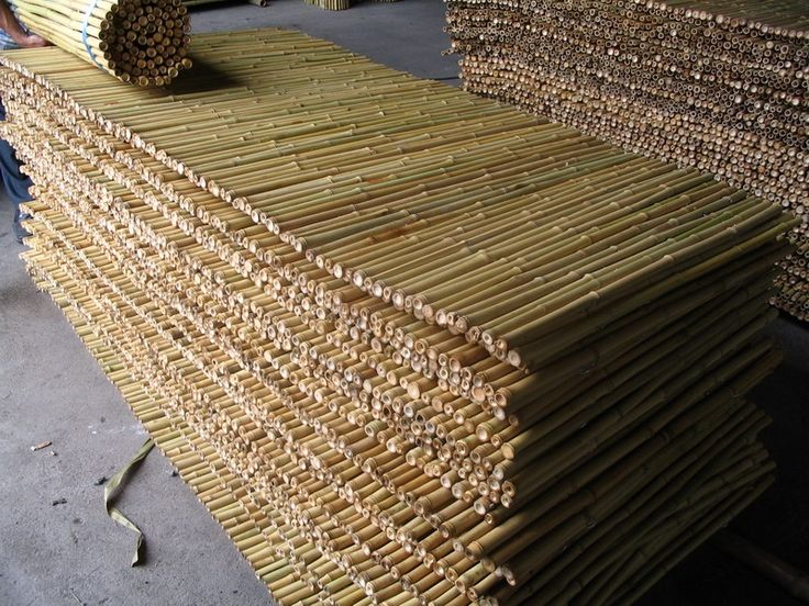 bamboo fence bamboo fencing