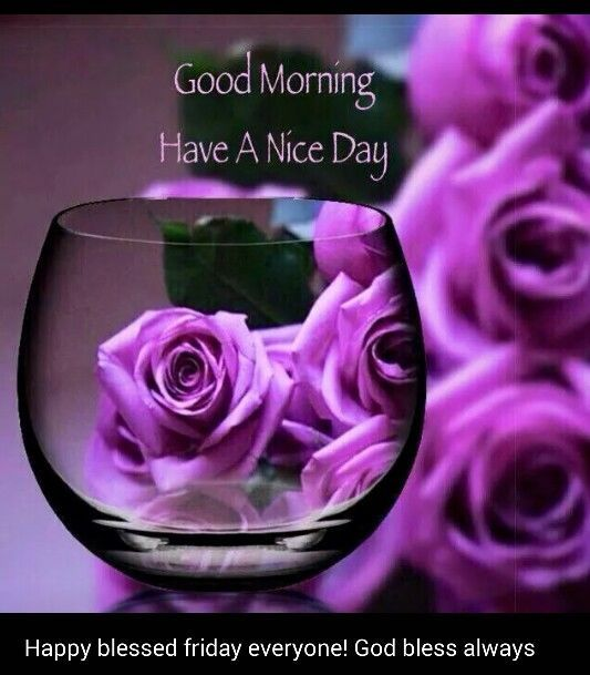 Good Morning Beautiful Happy Friday : Good morning have a nice day and blessed friday