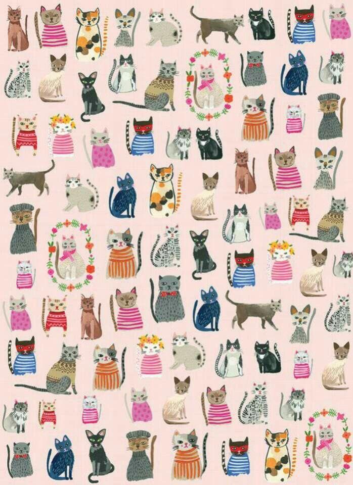 cat illustration #cat #illustration