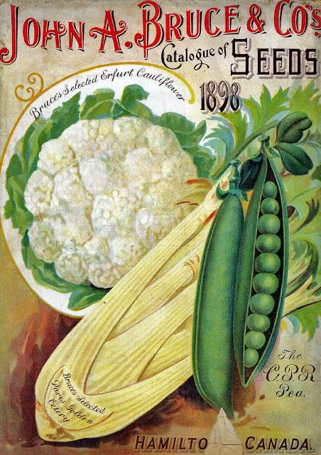 Early American Gardens: Catalogs on Seeds and Plants
