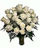 Send online white roses in vase to Hyderabad. Secured online gifts delivery to all location in Hyderabad. Visit our site : www.flowersgiftshyderabad.com/Condolence-to-Hyderabad.php