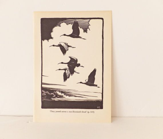 Ibis flying Vintage Bird Print Black and White Picture of
