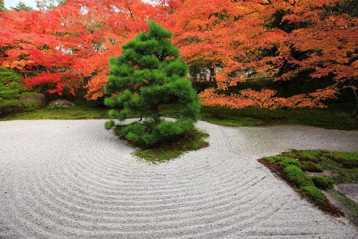 写真 天授庵 紅葉 高画質 京都 綺麗
