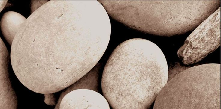 Tratamientos antibacterias, anti-hongos, hipoalérgicos y repelente a las manchas acuosas incorporados en un solo tejido de alta resistencia a la rotura (incluso contra la lejía). Sometido a pruebas de alergia, ergonomía e hidrofugado, ¡y sin renunciar al diseño! www.moysacaringcompany.com