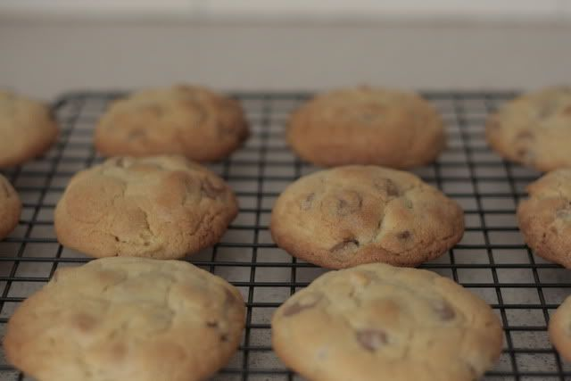 choc-chip cookies