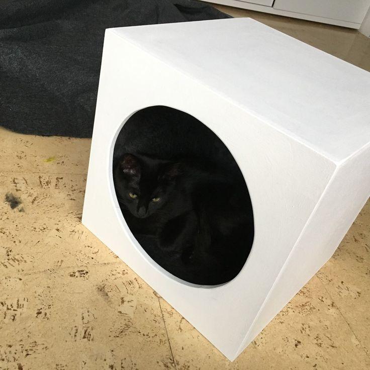 Diese Katzenhöhle, die in Expedit- und Kallax-Fächer passt.
