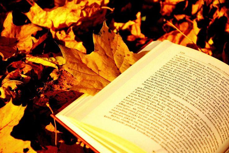 Sonbaharda En Çok Okunan Yeni Kitaplar