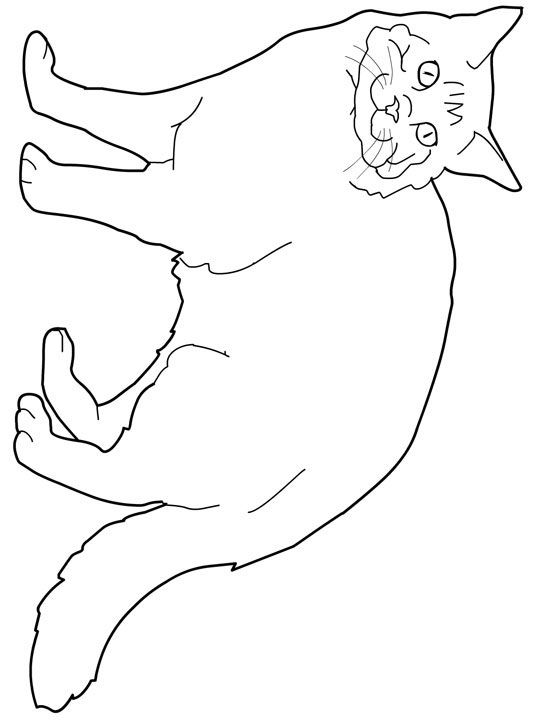Free Coloring Pages Of Dogs And Cats : 457 best coloring page cats images on pinterest