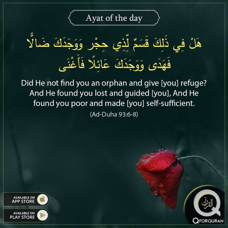 Did He not find you an orphan and give [you] refuge? And He found you lost and guided [you], And He found you poor and made [you] self-sufficient. (Ad-Duha 93:6-8) #AyatOfTheDay #Quran #QforQuran