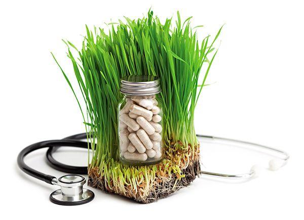 Holistic Medicine – About Holistic Healing