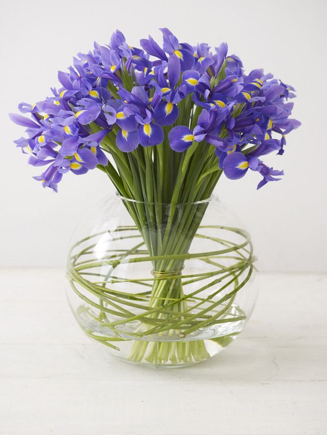 Iris- Summer Wedding Flowers – Saving Money on Seasonal Flowers