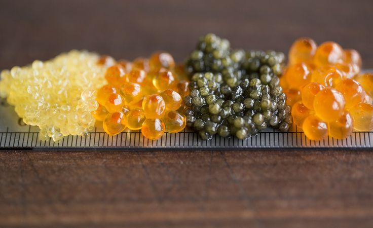 Types of Caviar