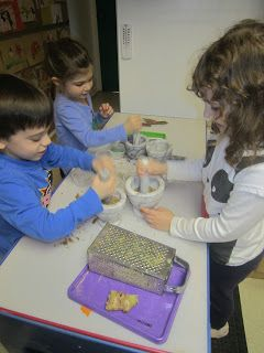 We do a lot of baking in our classroom.  Around this time of year we use a great deal of fragrant spices in our baking such as ginger, cinn...