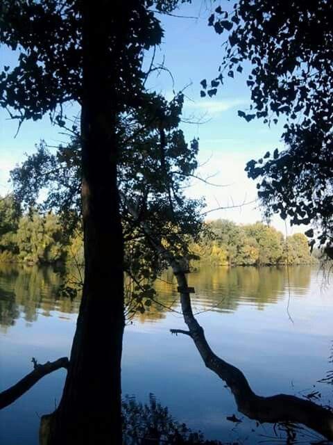 Tisza lake....