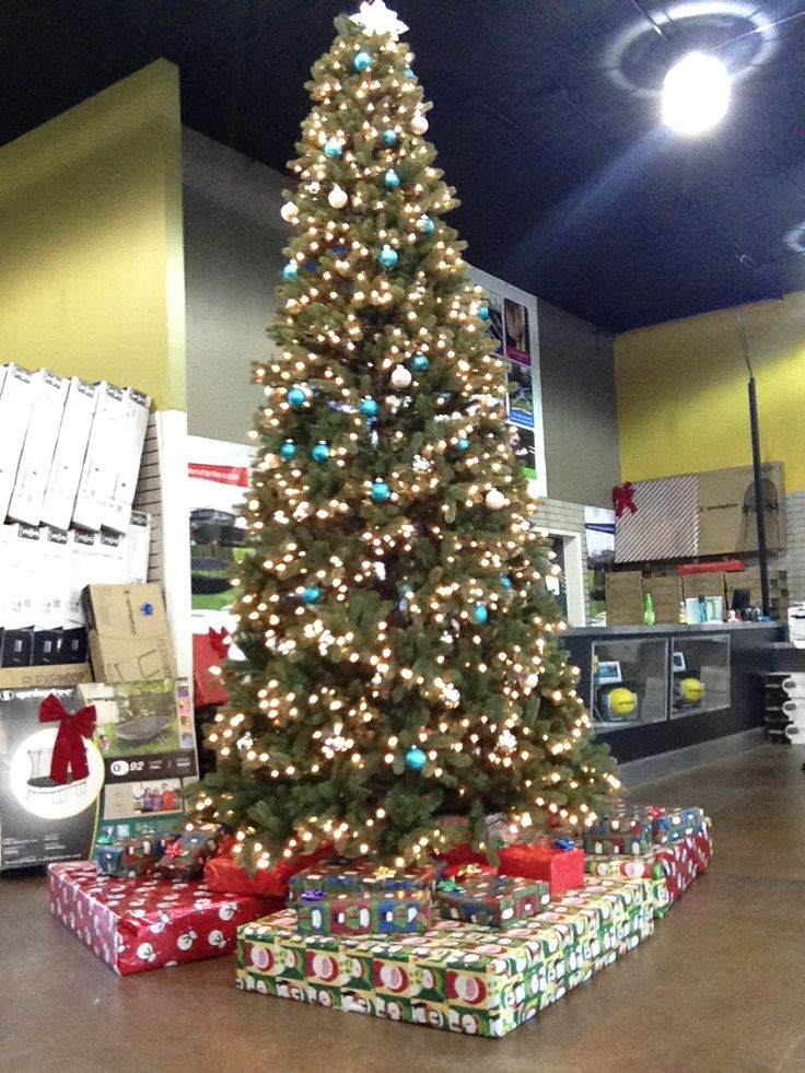 Giant Christmas tree! In the Seattle area? Stop by our Issaquah store to see if for yourself!