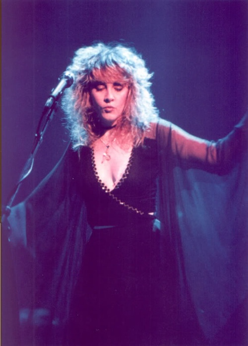 stevie nicks is everything in this photo.