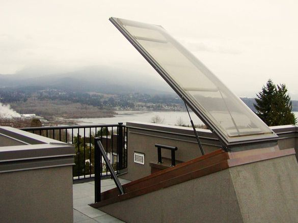 Dayliter Skylights acrylic roof door is available in a variety of shapes allowing you or your architect to design a door to your roof top patio that is ... & 11 best Sunken courtyard / bathroom images on Pinterest | Glass ... pezcame.com