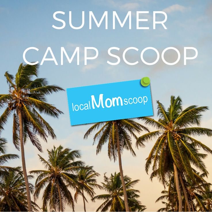 Summer Camp Scoop
