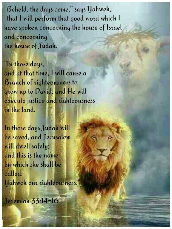 """""""Behold, the days come,"""" says Yahweh, """"that I will perform that good word which I have spoken concerning the house of Israel and concerning the house of Judah. """"In those days, and at that time, I will cause a Branch of righteousness to grow up to David; and He will execute justice and righteousness in the land. In those days Judah will be saved, and Jerusalem will dwell safely; and this is the name by which she shall be called: Yahweh our righteousness.""""  Jeremiah 33:14-16"""
