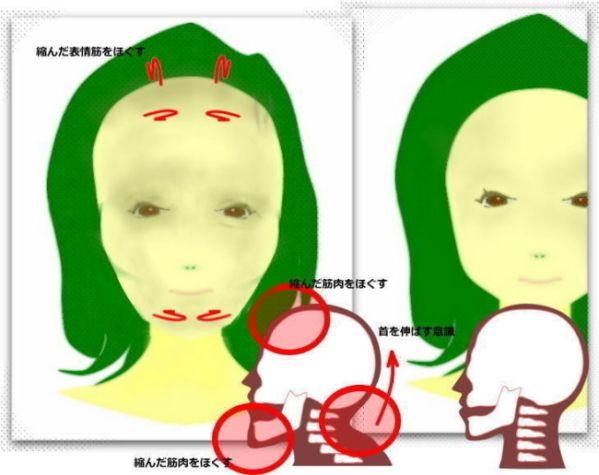 顔が長い、面長なおす方法、顎が長い、原因と改善方法 | 輪郭美顔、老け顔、歪みのなおし方  セラピスト戸塚の小顔整体