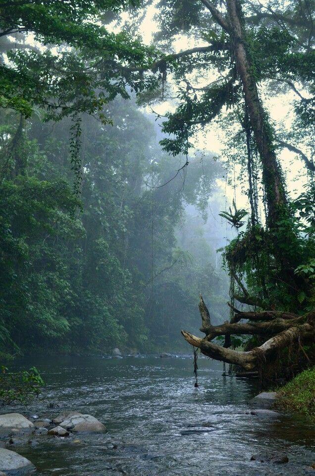 Nature wonderful