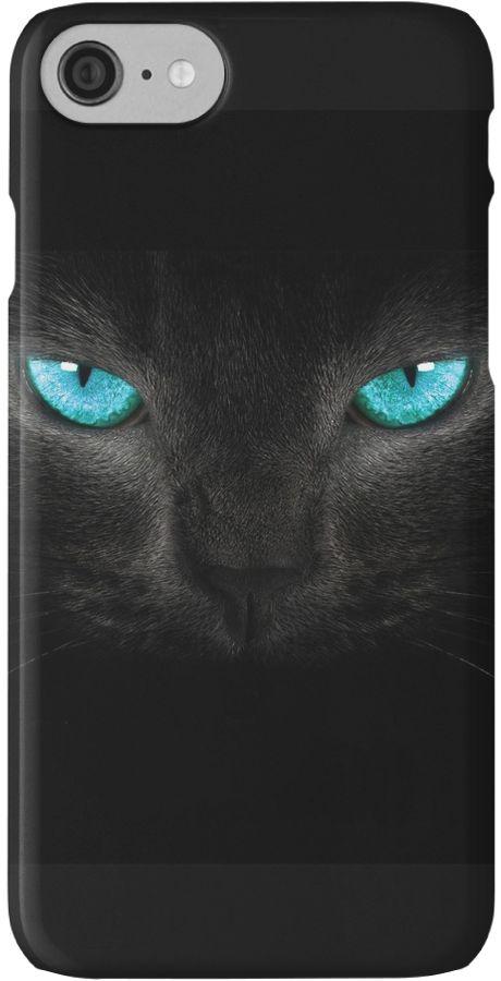 Cat turquoise eyes by Amandaseyfried
