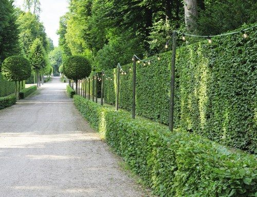Best 25+ Privacy Fences Ideas On Pinterest