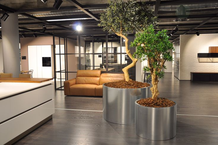 BM Luxury™ - www.contractbm.com #piantefinte  #pianteartificiali