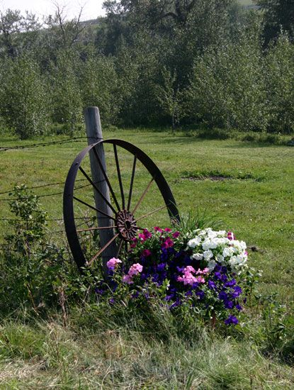 Lovely Western Wagon Wheels Would Be Beautiful In A Garden Or As Wedding Decor