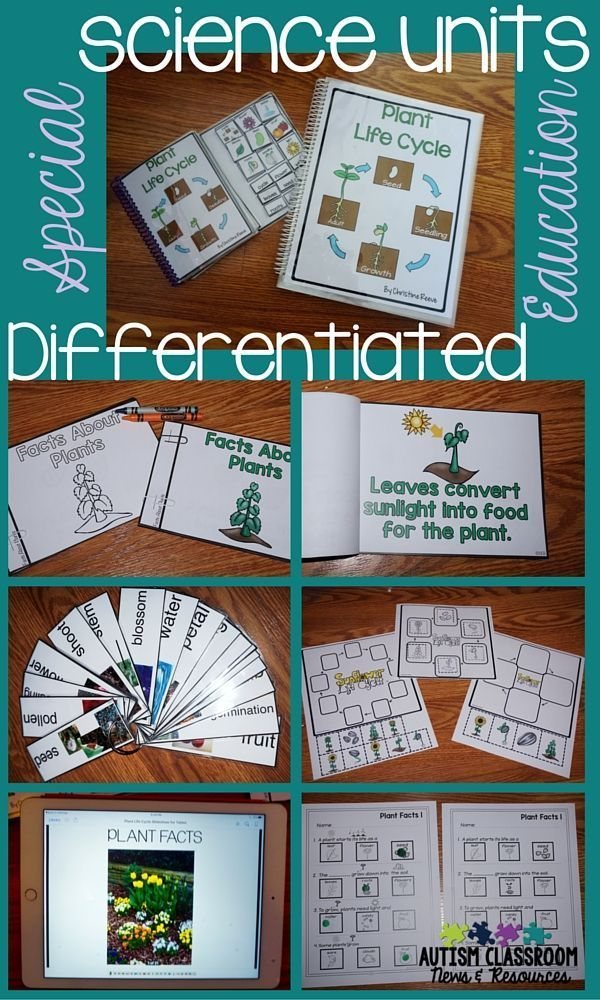 You can use this special education science unit on the life cycle of the plant for multiple types of learners in special education.  It includes slideshows for projectors or computers/tablets, an interactive book, photo vocabulary cards, and work product to demonstrate knowledge with permanent product.  Everything is already differentiated for you to use.