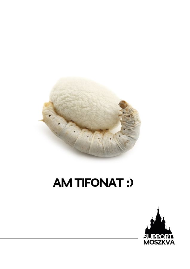 Am Tifonat!