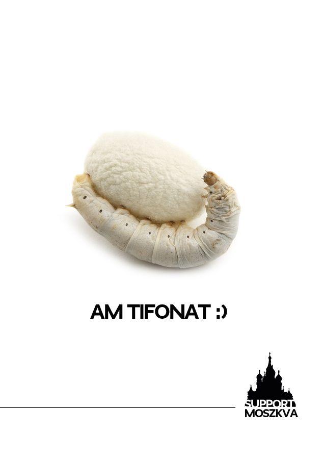 Am Tifonat!