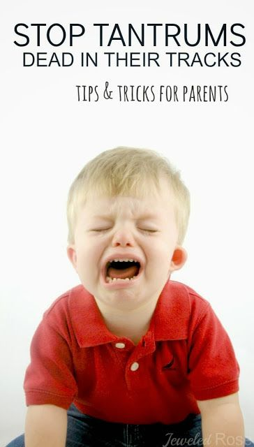 10 ways to stop a Temper Tantrum | Some of these tips would apply very well to some adults I know too. LOL! No... really.