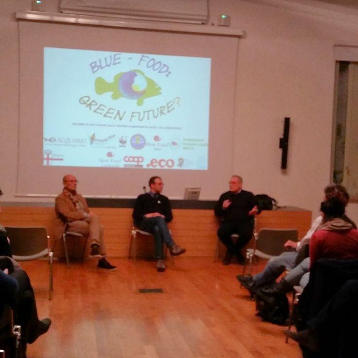 """#Storify story """"WWF Italia e il confronto all'americana sulla pesca sostenibile #wwflive"""" sfy.co/d0DkK"""