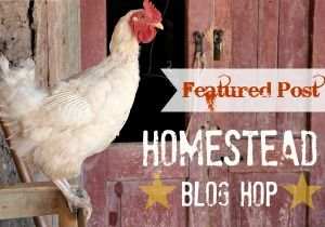 Featured Post Homestead Blog Hop | The Easy Homestead (.com)